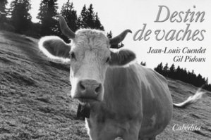 Destin de vaches - cabedita - 9782882955333 -