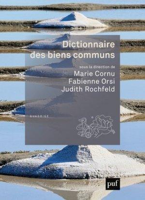 Dictionnaire des biens communs - puf - presses universitaires de france - 9782130654117 -