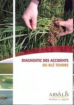 Diagnostic des accidents du blé tendre - arvalis - 9782864929703 -