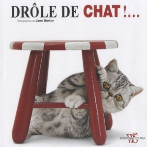 Drôle de chat ! - white star - 9788861123601 -