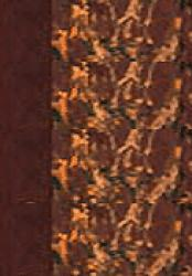 École de cavalerie 1ère partie Tome 2 - lavauzelle - 9782702509272 -
