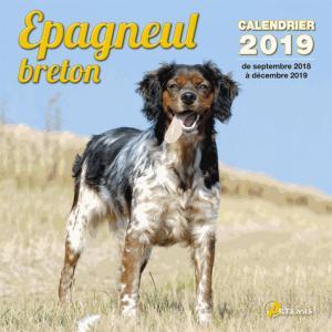 Epagneul breton : calendrier 2019 : de septembre 2018 à décembre 2019 - artemis - 9782816013276 -