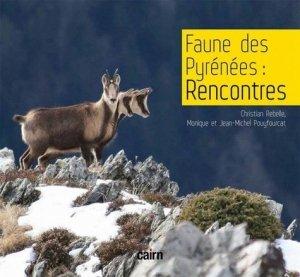 Faune des Pyrénées : Rencontres - cairn - 9782350687995 -