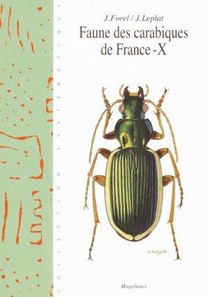 Faune des carabiques de France - X - magellanes - 9782911545771 -