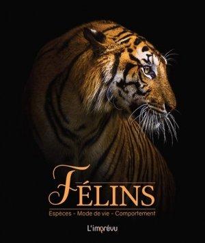Félins - de l'imprevu - 9791029508158 -
