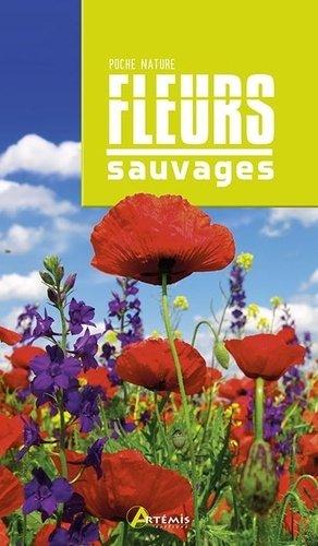 Fleurs sauvages - artémis - 9782816014433 -