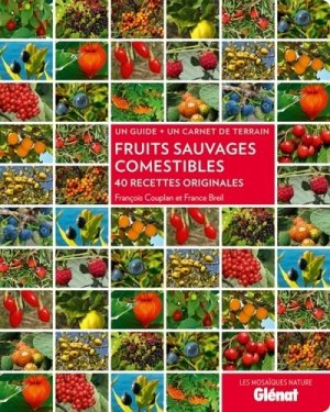 Fruits sauvages comestibles - glenat - 9782723489058 -