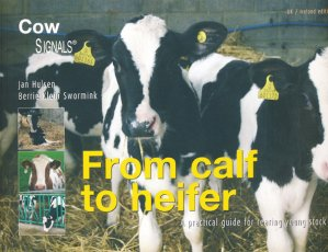 From calf to heifer - roodbont - 9789075280951