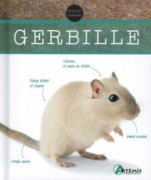 Gerbille - Artémis - 9782816016079 -