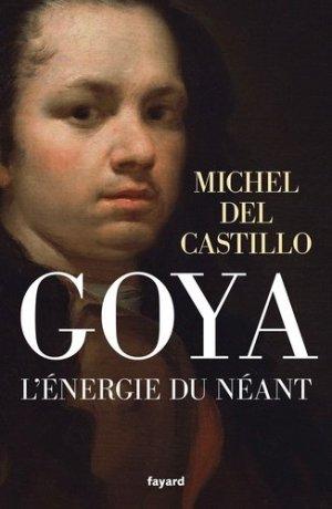 Goya. L'énergie du néant - Fayard - 9782213686950 -