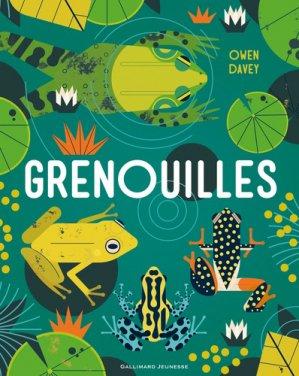 Grenouilles - gallimard - 9782075128179 - kanji, kanjis, diko, dictionnaire japonais, petit fujy