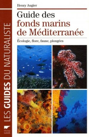 Guide des fonds marins de Méditerranée - delachaux et niestle - 9782603017043 -