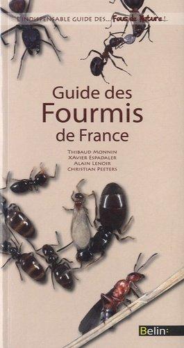Guide des Fourmis de France - belin - 9782701164717 -