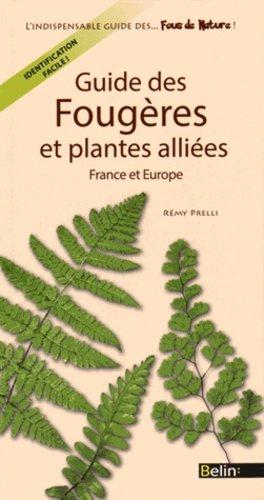 Guide des fougères et plantes alliées de France et d'Europe - belin - 9782701192765 -