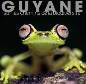 Guyane - Omniscience - 9791097502263 -