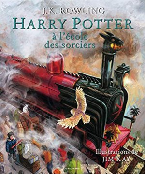 Harry Potter à l'école des sorciers - gallimard - 9782070669073 -