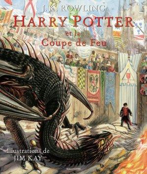Harry Potter, IV : Harry Potter et la Coupe de Feu - gallimard - 9782075090384 -