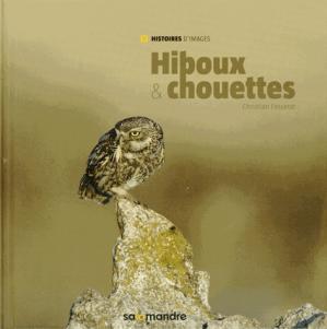 Hiboux & chouettes - la salamandre - 9791093655024 -