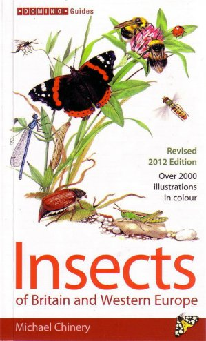 Insects of Britain and Western Europe - a & c black - 9781408179482 -