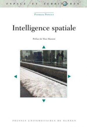 Intelligence spatiale - presses universitaires de rennes - 9782753555358 -