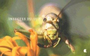 Insectes du sud - alcide - 9782917743478 -