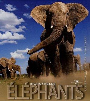Incroyables éléphants - white star - 9788861121935 -