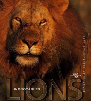 Incroyables Lions - white star - 9788861121942 -