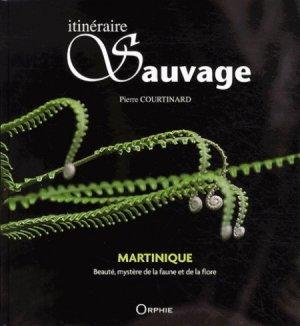 Itinéraire sauvage Martinique - orphie - 9782877638746 -