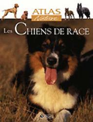 Les chiens de race - atlas  - 9782723448857 -