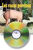 Les races porcines dans le monde  - itp - 9782859691363 -