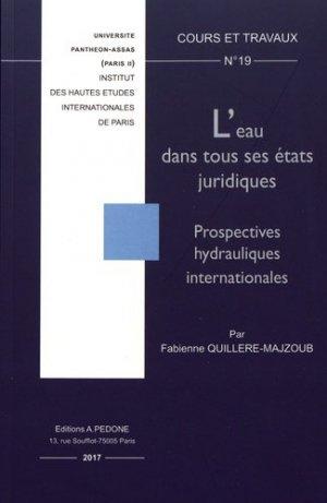 L'eau dans tous ses états juridiques. Prospectives hydrauliques internationales - pedone - 9782233008596 -
