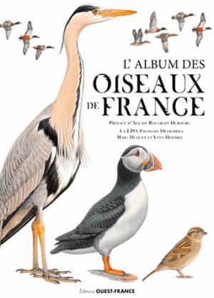 Le grand album des oiseaux de France - ouest-france - 9782737377471 -