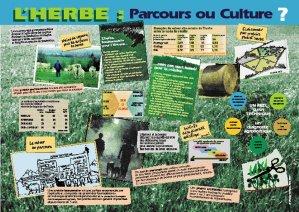 L'herbe, parcours ou culture ? (édition 2008) - educagri - 9782844446930