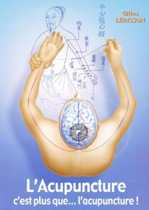 L'Acupuncture c'est plus que... l'acupuncture! - gilles lerisson - 9782914465182 -