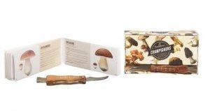 La cueillette aux champignons - Hachette - 9782013968256 -