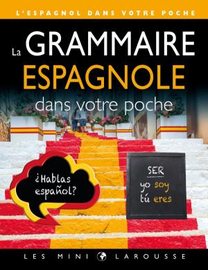 La grammaire espagnole dans votre poche - larousse - 9782035956545 -