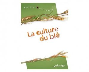 La culture du blé - educagri - 9782844441560 -