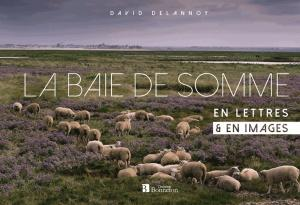 La baie de Somme en lettres & en images - christine bonneton - 9782862537436 -