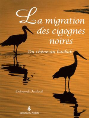 La migration des cigognes noires - du perron - 9782871141815 -