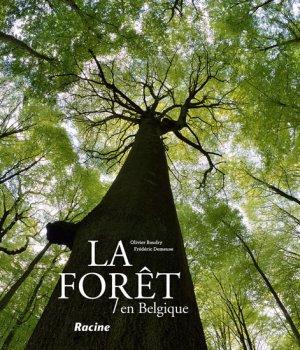 La forêt en Belgique - racine - 9782873869038 -
