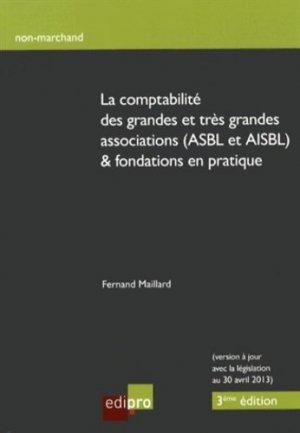 La comptabilité des grandes et très grandes associations (ASBL et AISBL) & fondations en pratique - Edipro - 9782874962424 -