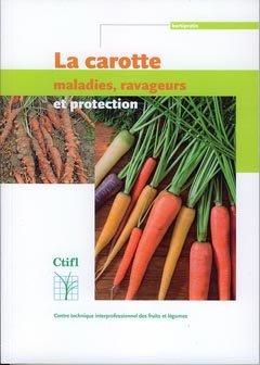 La carotte - ctifl - 9782879113302