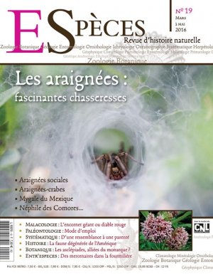 Les araignées fascinantes chasseresses - kyrnos publications - 2224612288375 -