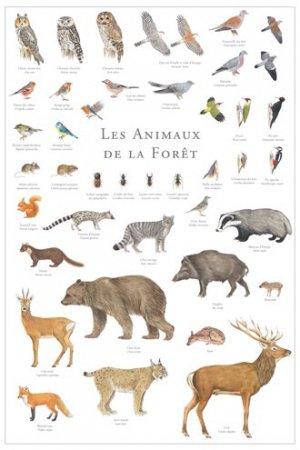 Les animaux de la forêt - gulf stream - 2225012448932