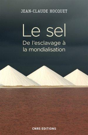 Le sel - CNRS - 9782271116734 -