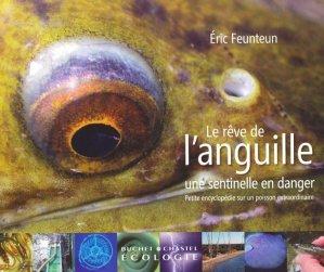Le rêve de l'anguille - buchet chastel - 9782283024218 -