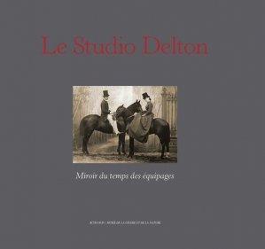 Le Studio Delton - actes sud - 9782330036546 -