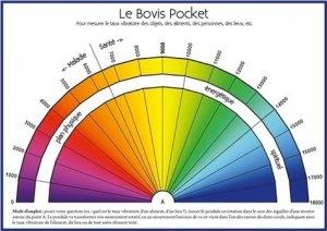 Le bovis pocket - EccE - 9782351953150 -