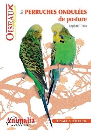 Les perruches ondulées de posture - animalia - 9782359090338 -