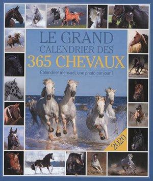 Le grand calendrier des 365 chevaux - 365 - 9782377613687